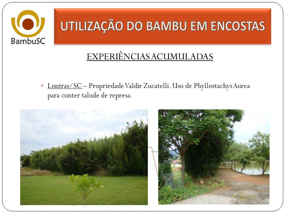 EXPERIÊNCIAS ACUMULADAS Rancho Queimado/SC – Sítio Vagalume - Propriedade Marcos Marques.