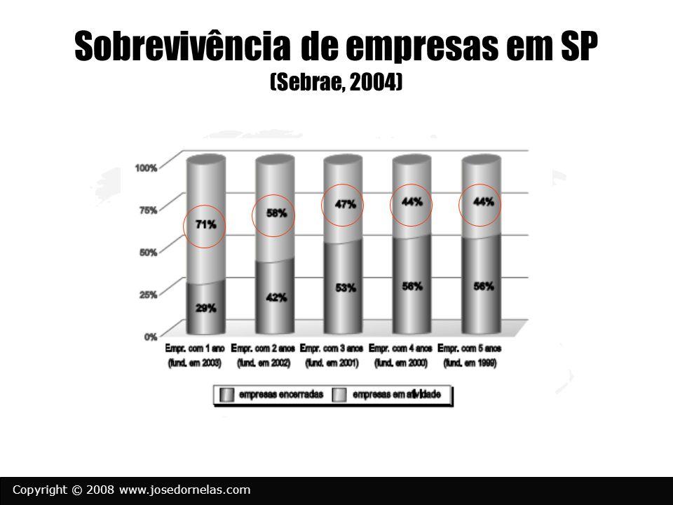 Copyright © 2008 www.josedornelas.com Sobrevivência de empresas em SP (Sebrae, 2004)