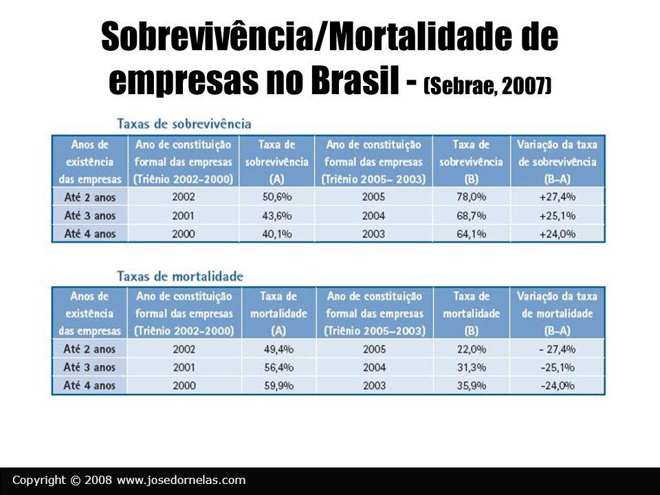 Copyright © 2008 www.josedornelas.com Sobrevivência/Mortalidade de empresas no Brasil - (Sebrae, 2007)