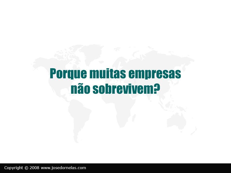 Copyright © 2008 www.josedornelas.com Porque muitas empresas não sobrevivem