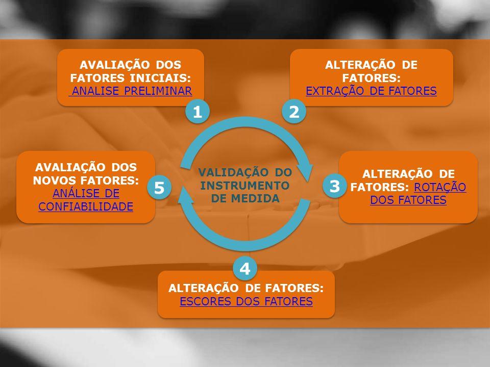 ALTERAÇÃO DE FATORES: ROTAÇÃO DOS FATORESROTAÇÃO DOS FATORES ALTERAÇÃO DE FATORES: ROTAÇÃO DOS FATORESROTAÇÃO DOS FATORES 3 3 ALTERAÇÃO DE FATORES: ESCORES DOS FATORES ALTERAÇÃO DE FATORES: ESCORES DOS FATORES 4 4 AVALIAÇÃO DOS NOVOS FATORES: ANÁLISE DE CONFIABILIDADE ANÁLISE DE CONFIABILIDADE AVALIAÇÃO DOS NOVOS FATORES: ANÁLISE DE CONFIABILIDADE ANÁLISE DE CONFIABILIDADE 5 5 VALIDAÇÃO DO INSTRUMENTO DE MEDIDA AVALIAÇÃO DOS FATORES INICIAIS: ANALISE PRELIMINAR AVALIAÇÃO DOS FATORES INICIAIS: ANALISE PRELIMINAR 1 1 ALTERAÇÃO DE FATORES: EXTRAÇÃO DE FATORES EXTRAÇÃO DE FATORES ALTERAÇÃO DE FATORES: EXTRAÇÃO DE FATORES EXTRAÇÃO DE FATORES 2 2