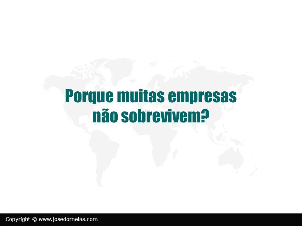 Copyright © www.josedornelas.com Porque muitas empresas não sobrevivem?