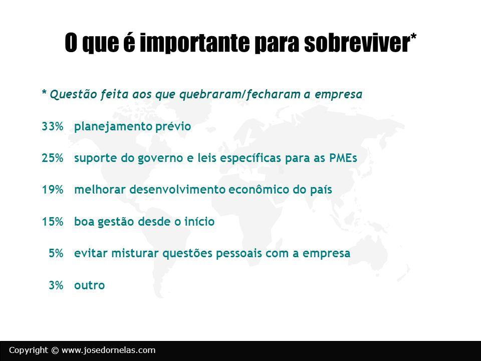 Copyright © www.josedornelas.com O que é importante para sobreviver* * Questão feita aos que quebraram/fecharam a empresa 33% planejamento prévio 25%