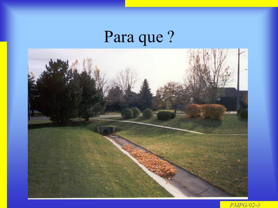 PMPG/02-3 Para que ?