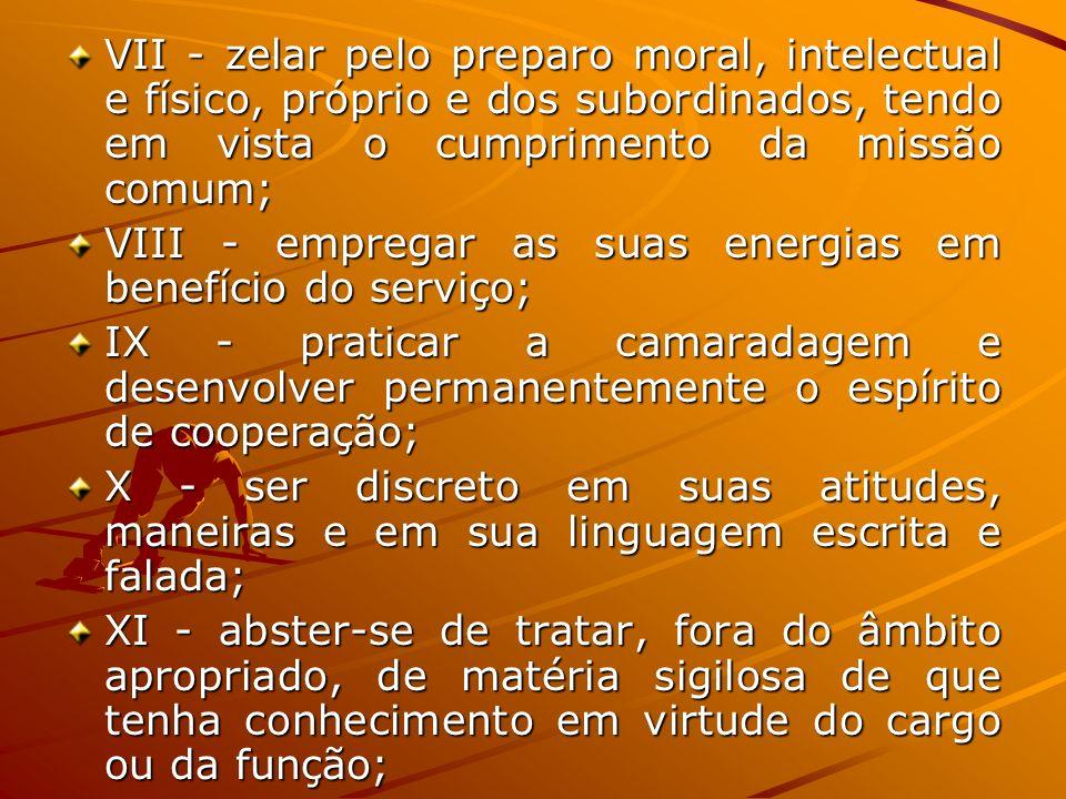 VII - zelar pelo preparo moral, intelectual e físico, próprio e dos subordinados, tendo em vista o cumprimento da missão comum; VIII - empregar as sua