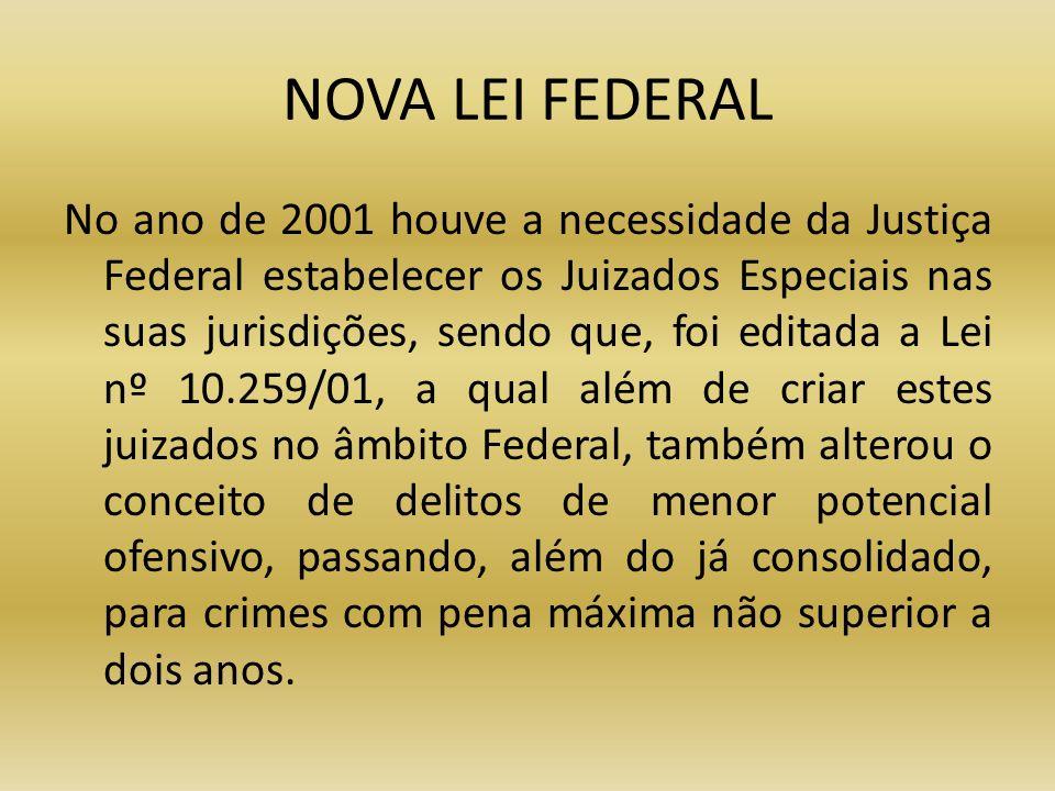 NOVA LEI FEDERAL No ano de 2001 houve a necessidade da Justiça Federal estabelecer os Juizados Especiais nas suas jurisdições, sendo que, foi editada