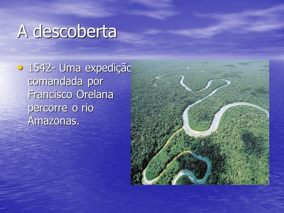 A descoberta 1542- Uma expedição comandada por Francisco Orelana percorre o rio Amazonas. 1542- Uma expedição comandada por Francisco Orelana percorre