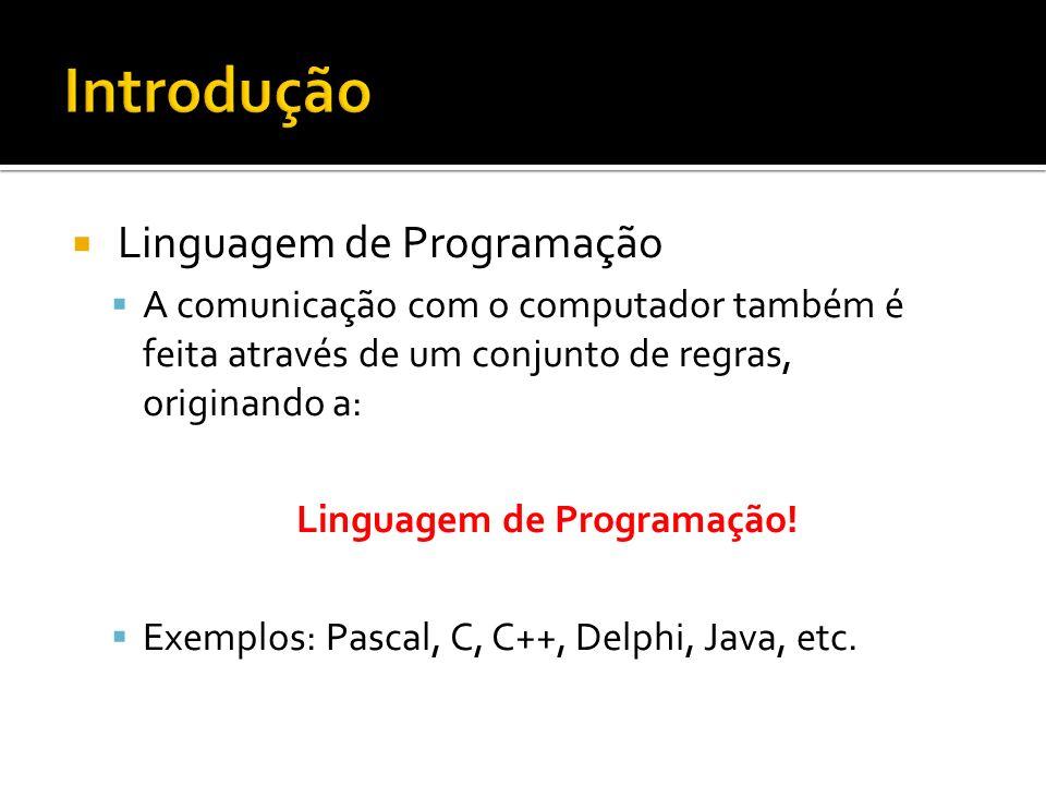 Linguagem de Programação A comunicação com o computador também é feita através de um conjunto de regras, originando a: Linguagem de Programação.
