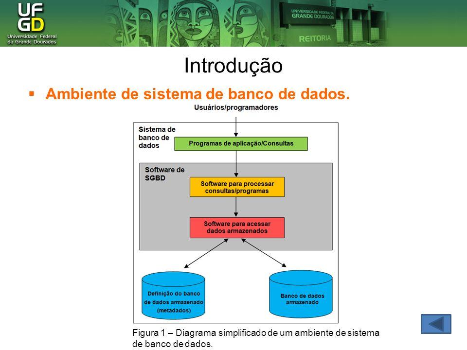 Introdução Ambiente de sistema de banco de dados. Figura 1 – Diagrama simplificado de um ambiente de sistema de banco de dados.