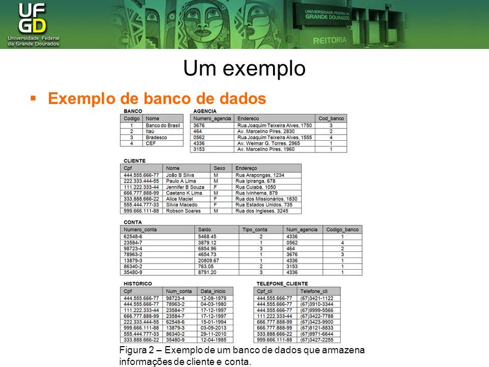 Um exemplo Um sistema de banco de dados fornece uma linguagem de definição de dados (DDL) para especificar o esquema de banco de dados e uma linguagem de manipulação de dados para expressar as consultas e atualizações de banco de dados.