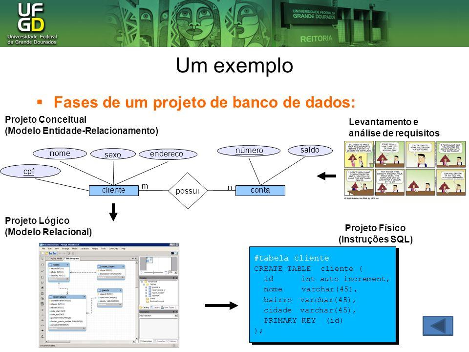 Usuários de banco de dados Administradores de banco de dados Autoriza o acesso ao banco de dados, coordena seu uso e adquire recursos de software e hardware.