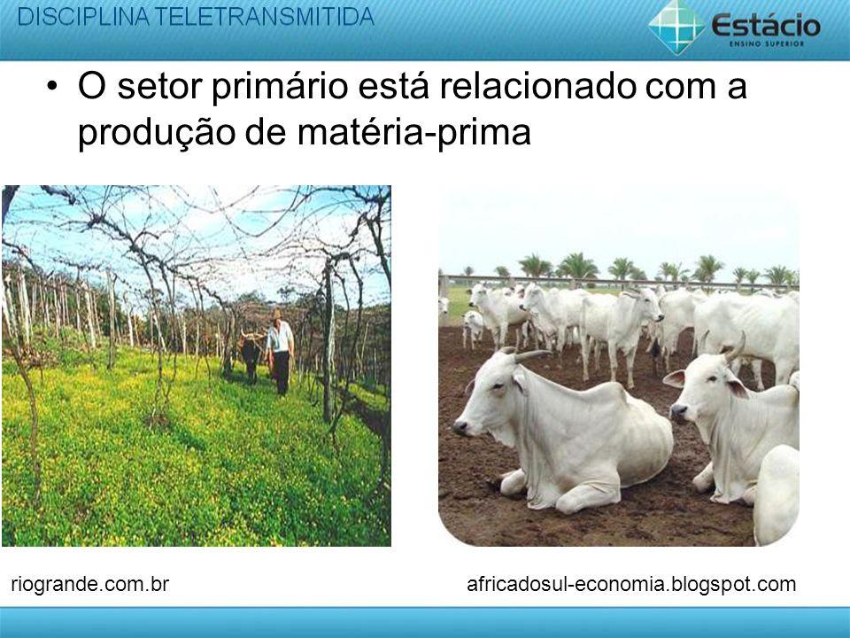 O setor primário está relacionado com a produção de matéria-prima riogrande.com.brafricadosul-economia.blogspot.com