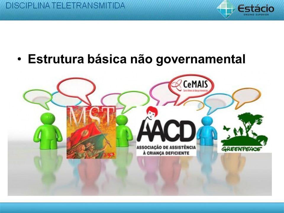 Estrutura básica não governamental
