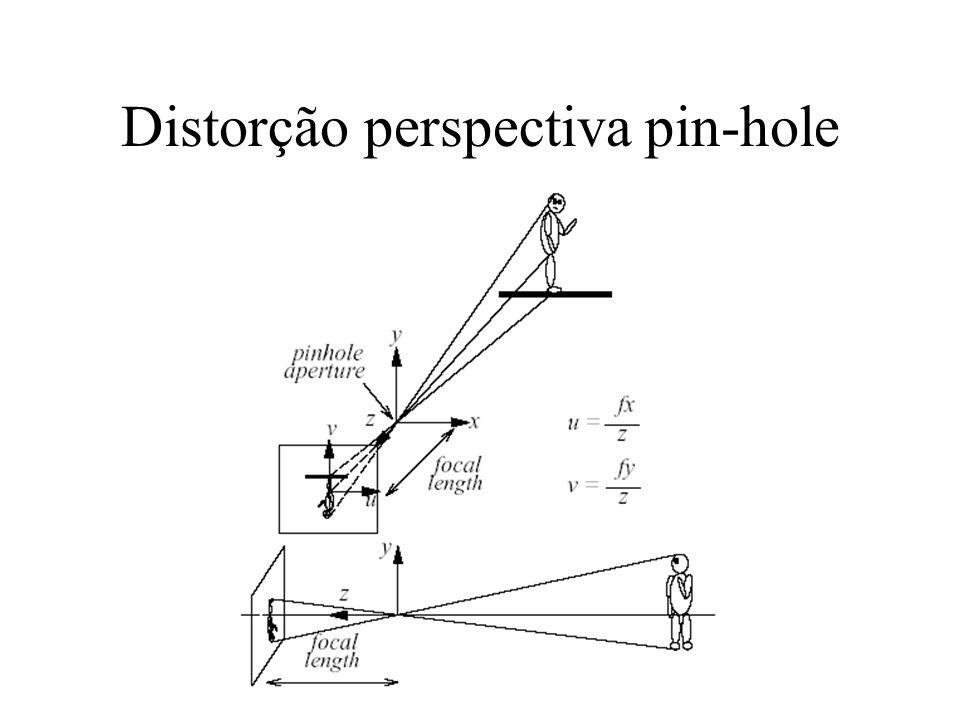 Parâmetros intrínsecos Caracterizam as propriedades óticas, geométricas e digitais da câmera visualizadora.
