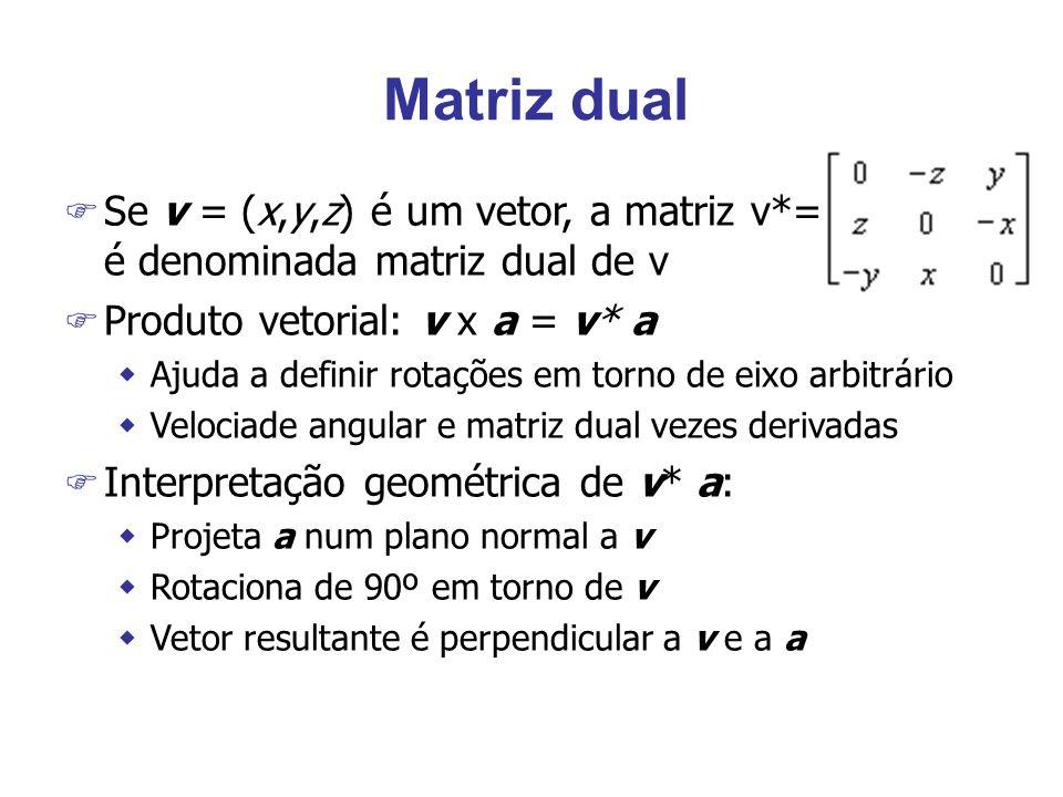 Matriz dual F Se v = (x,y,z) é um vetor, a matriz v*= é denominada matriz dual de v F Produto vetorial: v x a = v* a wAjuda a definir rotações em torn