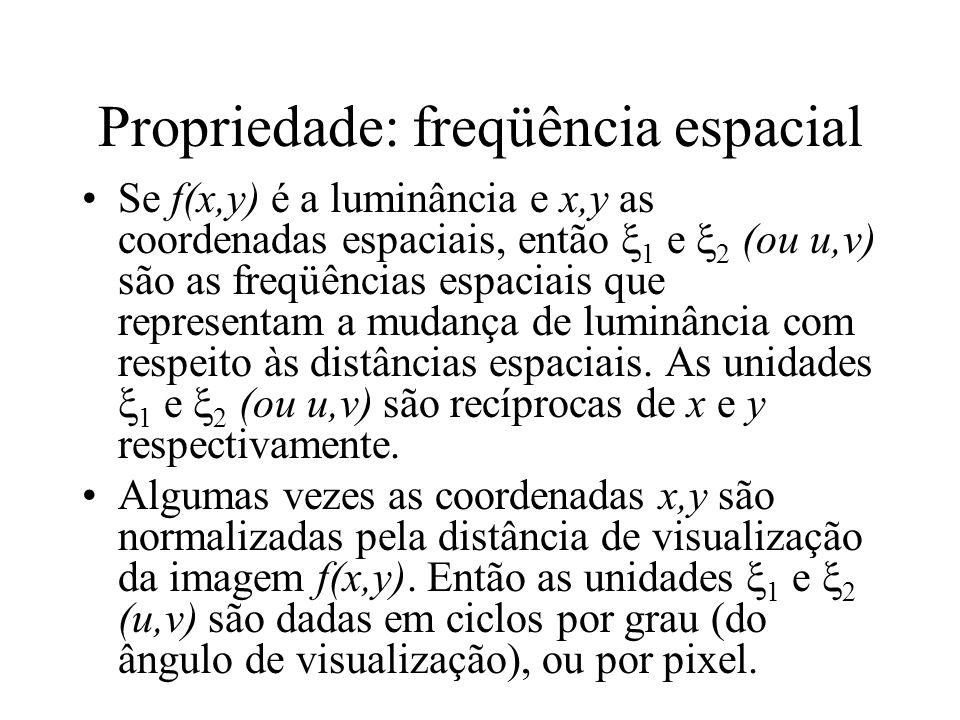 Propriedade: freqüência espacial Se f(x,y) é a luminância e x,y as coordenadas espaciais, então 1 e 2 (ou u,v) são as freqüências espaciais que representam a mudança de luminância com respeito às distâncias espaciais.