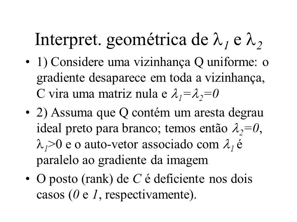 Interpret. geométrica de 1 e 2 1) Considere uma vizinhança Q uniforme: o gradiente desaparece em toda a vizinhança, C vira uma matriz nula e 1 = 2 =0