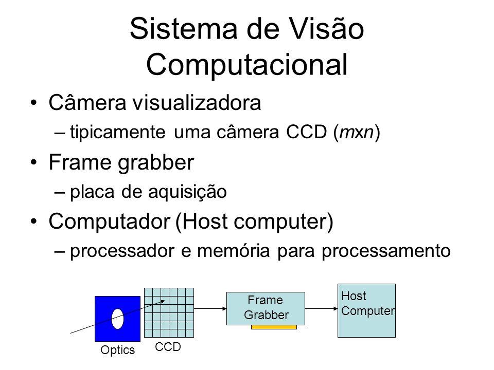 Parâmetros internos e externos Parâmetros intrínsecos são os necessários para ligar as coordenadas de pixel de um ponto na imagem com as respectivas coordenadas no frame de câmera.