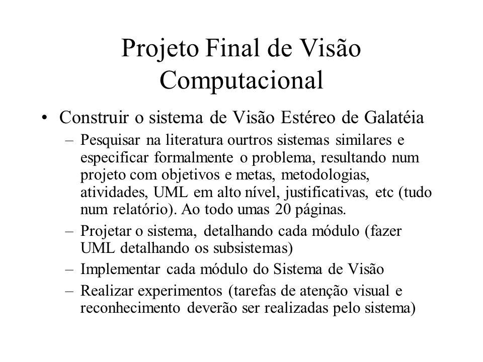 Projeto Final de Visão Computacional Construir o sistema de Visão Estéreo de Galatéia –Pesquisar na literatura ourtros sistemas similares e especifica