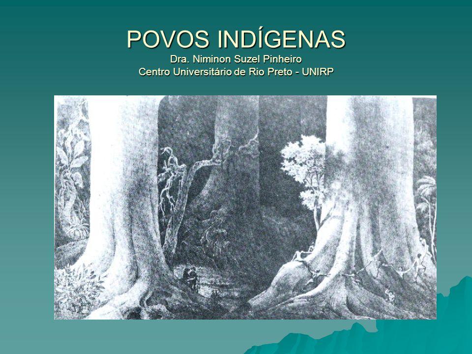 POVOS INDÍGENAS Dra. Niminon Suzel Pinheiro Centro Universitário de Rio Preto - UNIRP