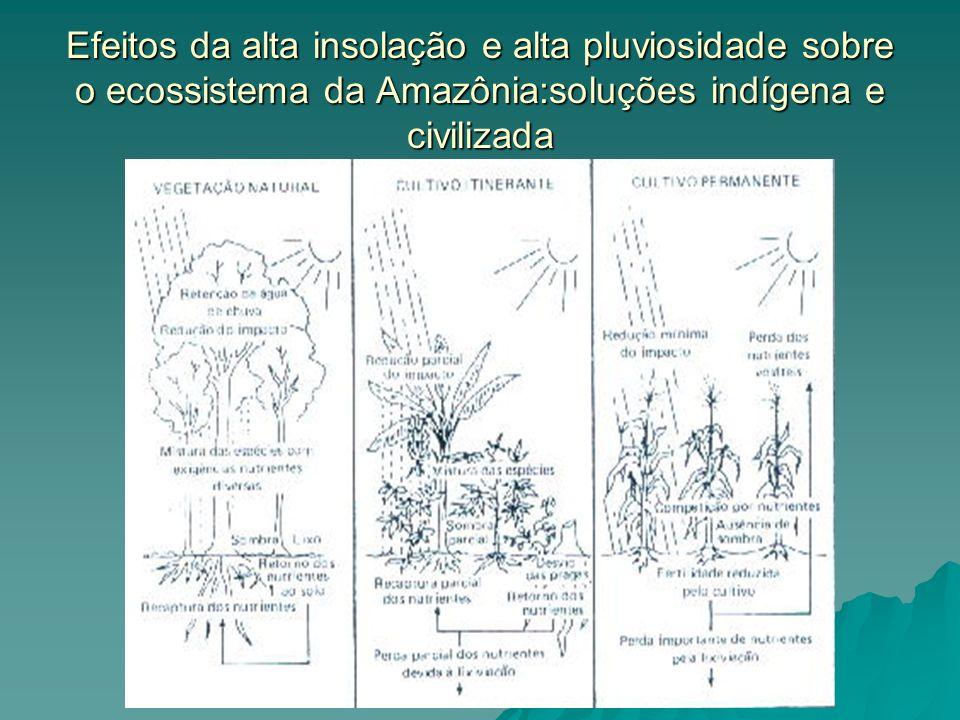 Efeitos da alta insolação e alta pluviosidade sobre o ecossistema da Amazônia:soluções indígena e civilizada