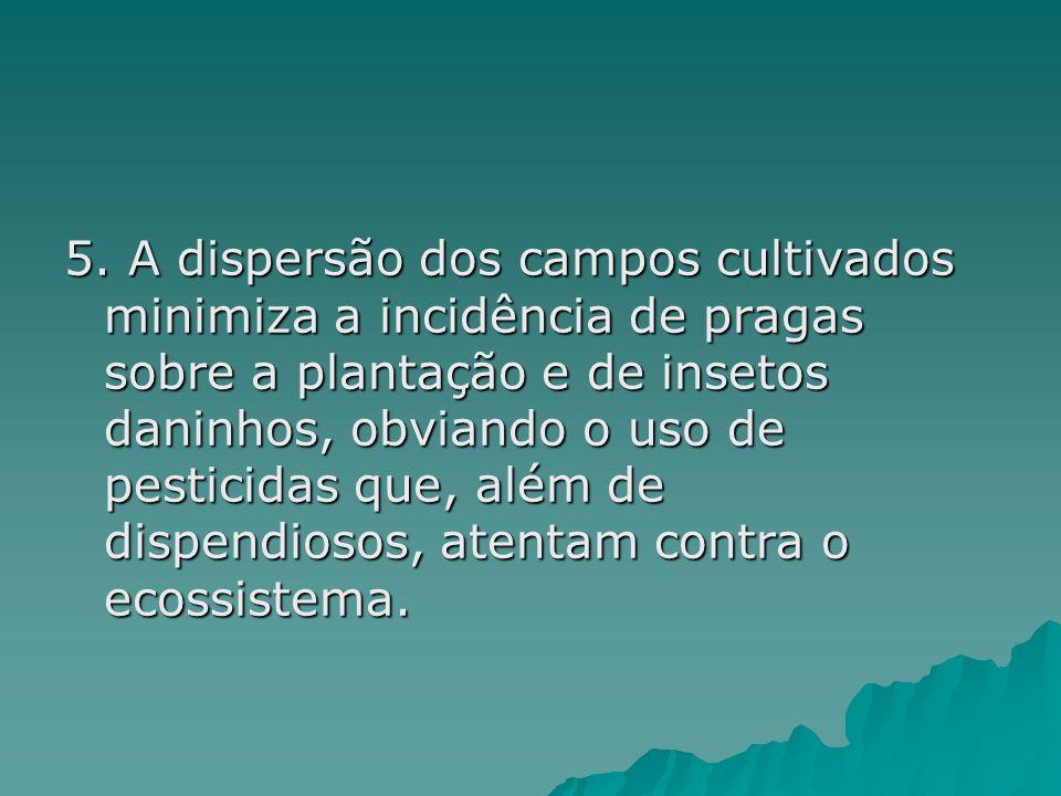 5. A dispersão dos campos cultivados minimiza a incidência de pragas sobre a plantação e de insetos daninhos, obviando o uso de pesticidas que, além d