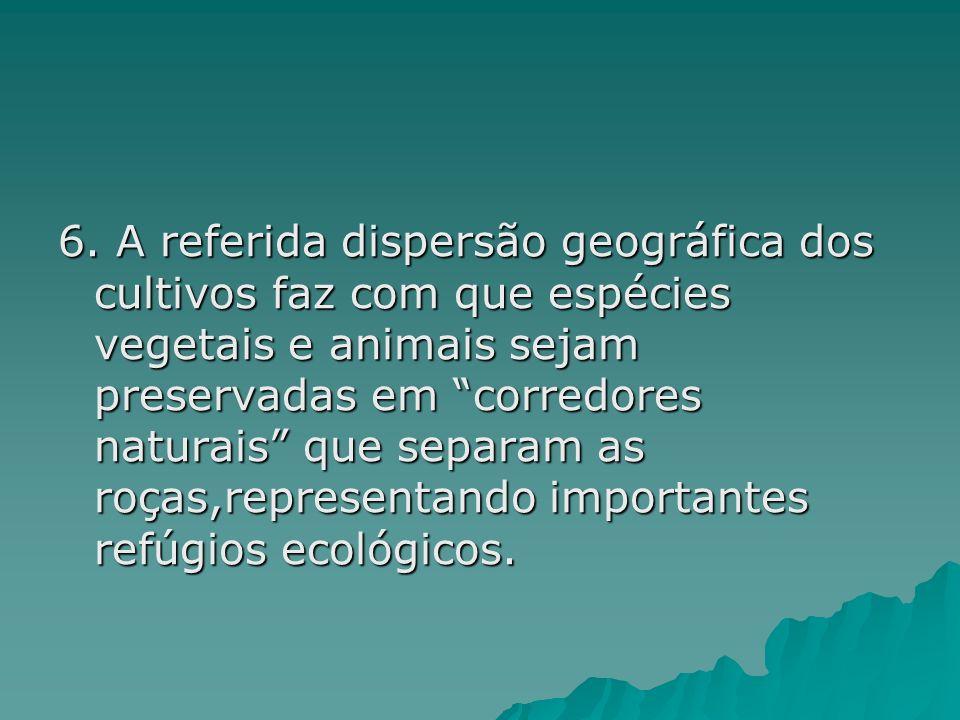 6. A referida dispersão geográfica dos cultivos faz com que espécies vegetais e animais sejam preservadas em corredores naturais que separam as roças,