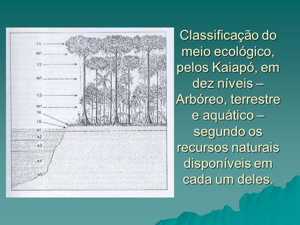Classificação do meio ecológico, pelos Kaiapó, em dez níveis – Arbóreo, terrestre e aquático – segundo os recursos naturais disponíveis em cada um deles.