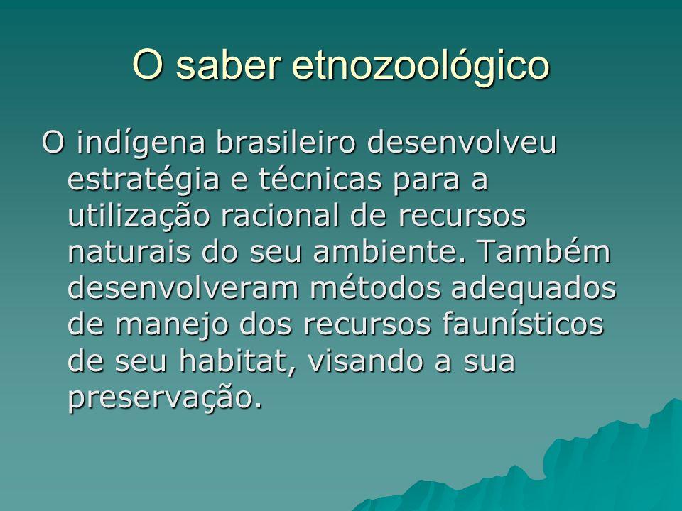 O saber etnozoológico O indígena brasileiro desenvolveu estratégia e técnicas para a utilização racional de recursos naturais do seu ambiente. Também