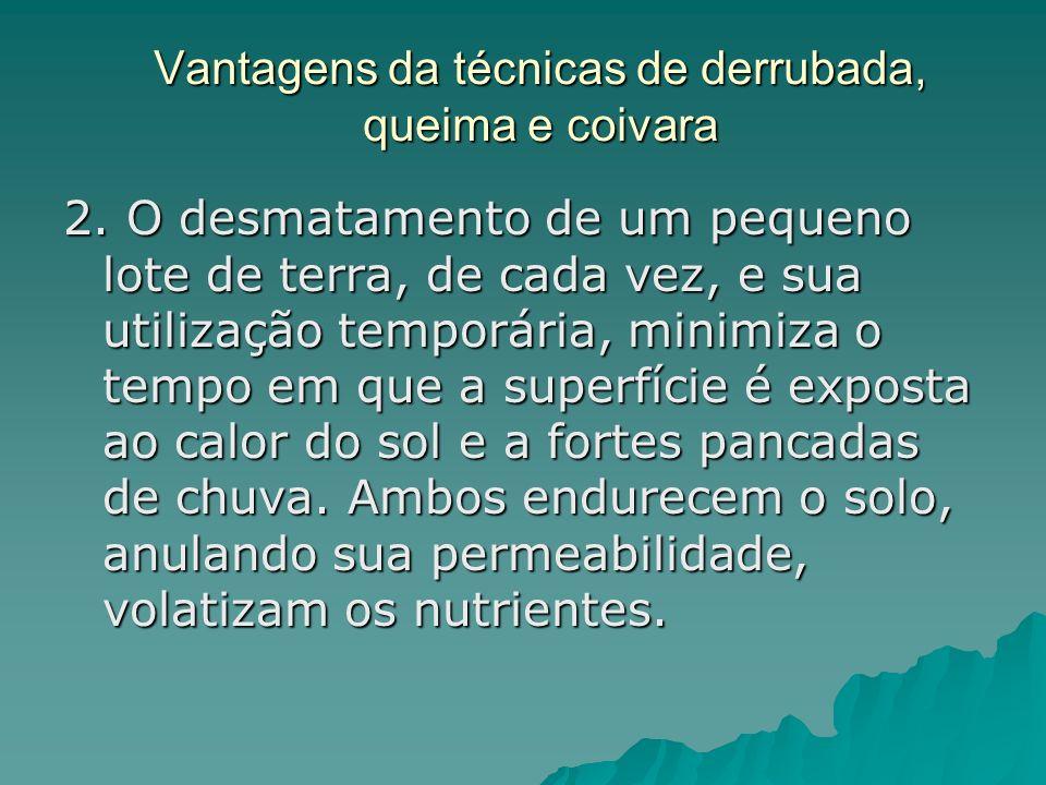 Vantagens das soluções indígenas 3.