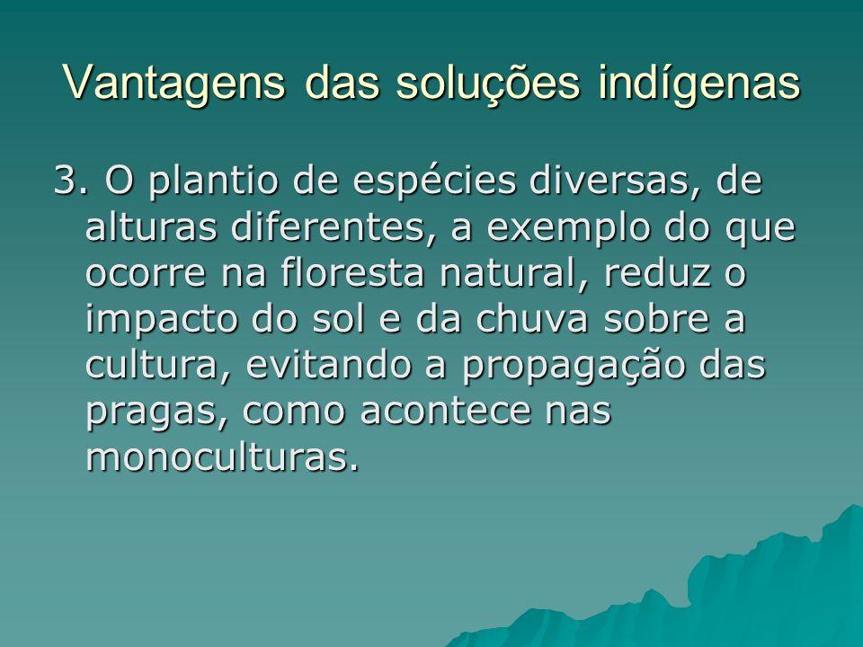 Vantagens das soluções indígenas 3. O plantio de espécies diversas, de alturas diferentes, a exemplo do que ocorre na floresta natural, reduz o impact