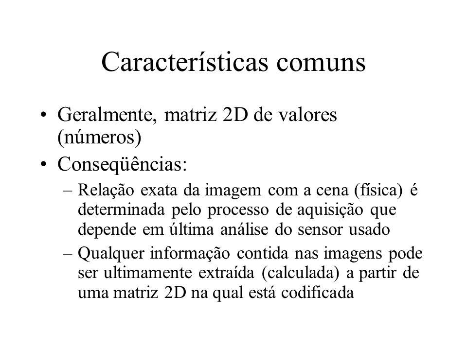 Características comuns Geralmente, matriz 2D de valores (números) Conseqüências: –Relação exata da imagem com a cena (física) é determinada pelo proce