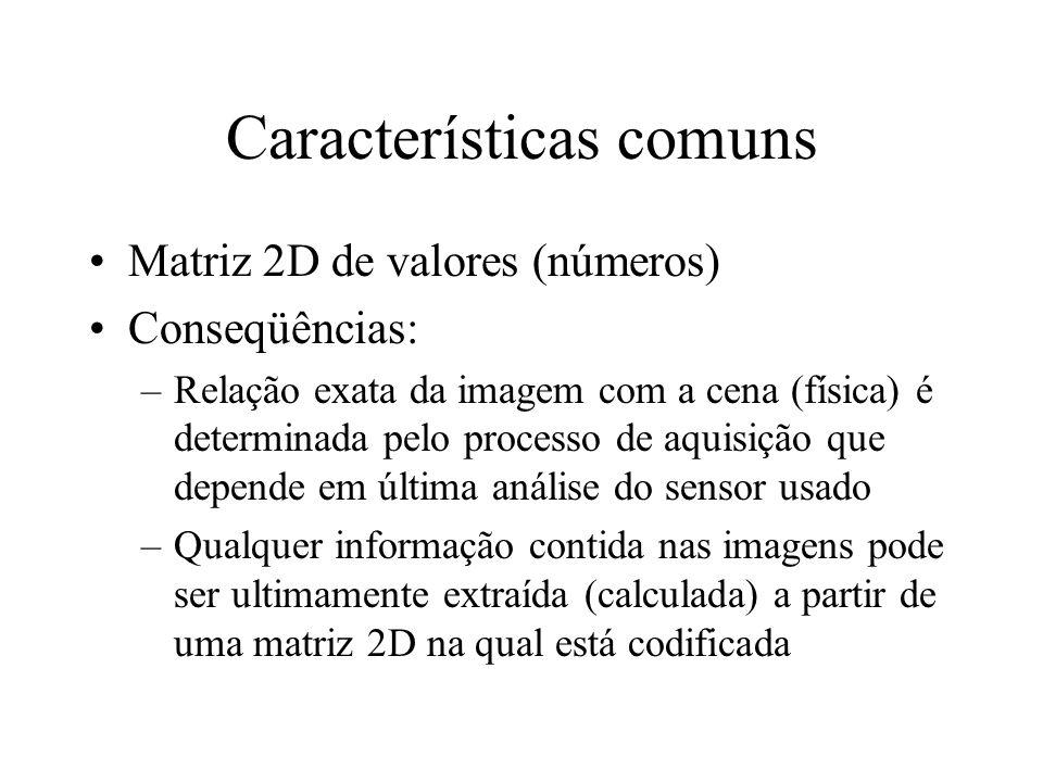 Características comuns Matriz 2D de valores (números) Conseqüências: –Relação exata da imagem com a cena (física) é determinada pelo processo de aquisição que depende em última análise do sensor usado –Qualquer informação contida nas imagens pode ser ultimamente extraída (calculada) a partir de uma matriz 2D na qual está codificada