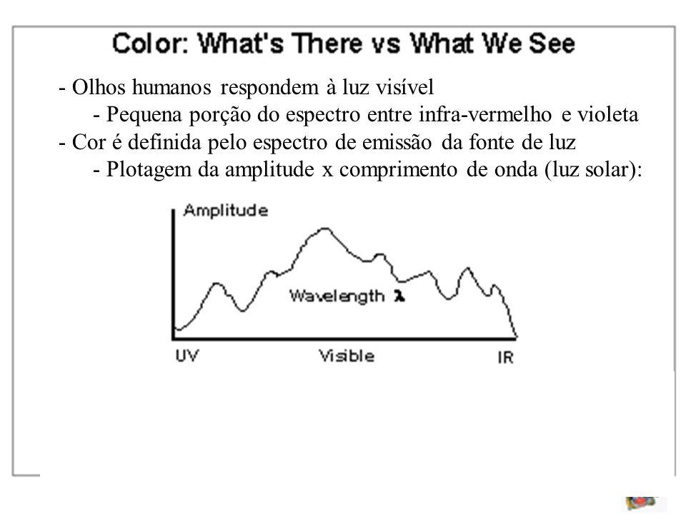 - Olhos humanos respondem à luz visível - Pequena porção do espectro entre infra-vermelho e violeta - Cor é definida pelo espectro de emissão da fonte de luz - Plotagem da amplitude x comprimento de onda (luz solar):