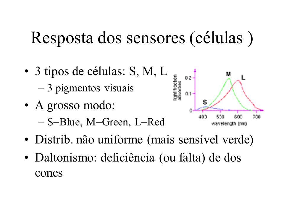 Resposta dos sensores (células ) 3 tipos de células: S, M, L –3 pigmentos visuais A grosso modo: –S=Blue, M=Green, L=Red Distrib.