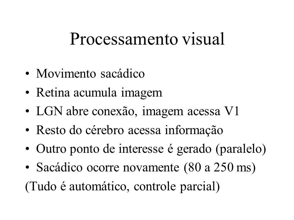 Processamento visual Movimento sacádico Retina acumula imagem LGN abre conexão, imagem acessa V1 Resto do cérebro acessa informação Outro ponto de interesse é gerado (paralelo) Sacádico ocorre novamente (80 a 250 ms) (Tudo é automático, controle parcial)