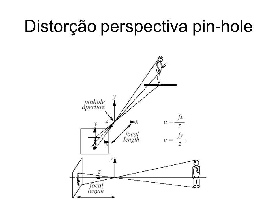 Distorção perspectiva pin-hole