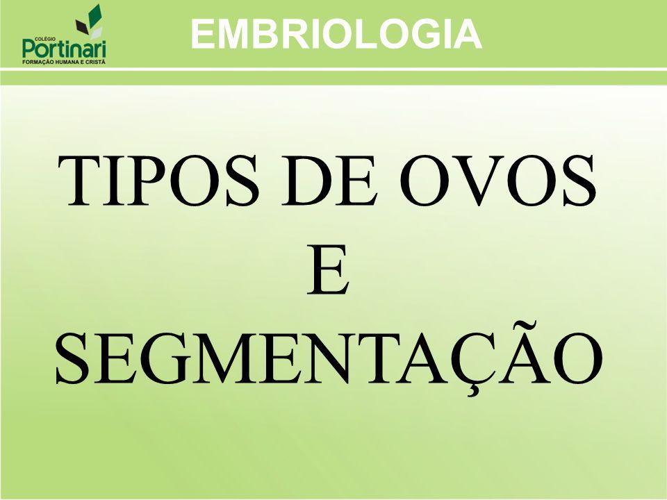 EMBRIOLOGIA Segmentação ou Clivagem Corresponde às divisões iniciais que acontecem no ovo até a formação da fase de blástula.