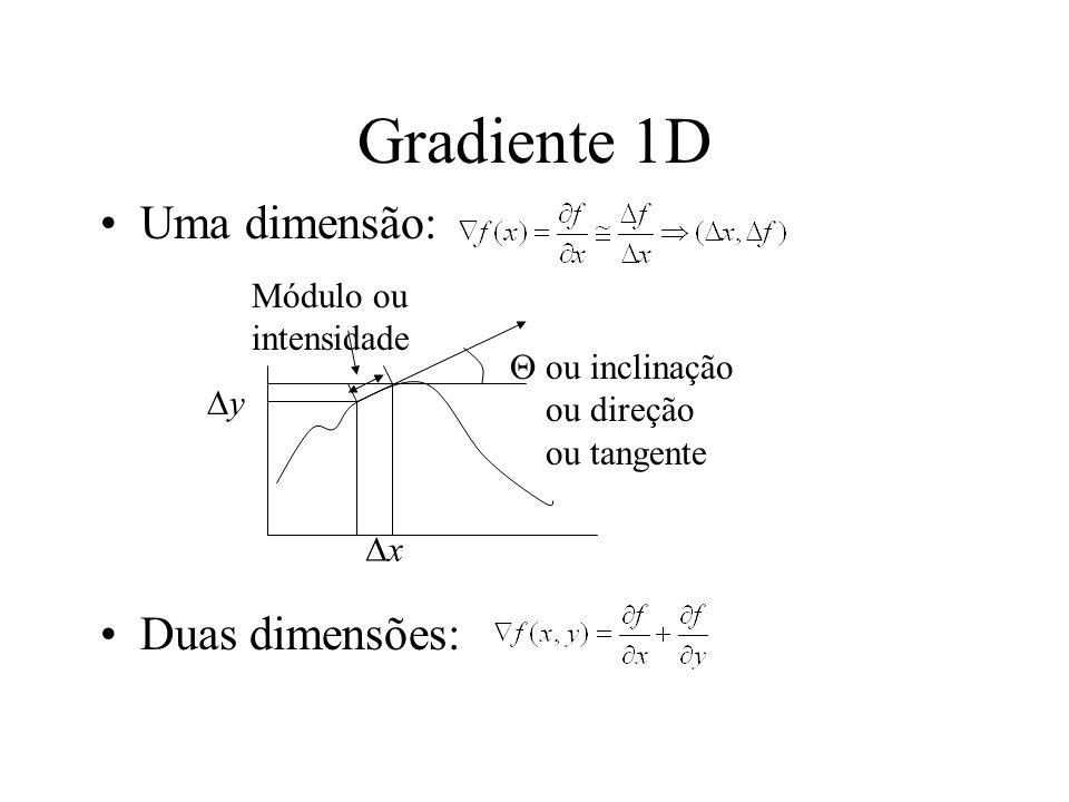 Gradiente 1D Uma dimensão: Duas dimensões: x y ou inclinação ou direção ou tangente Módulo ou intensidade