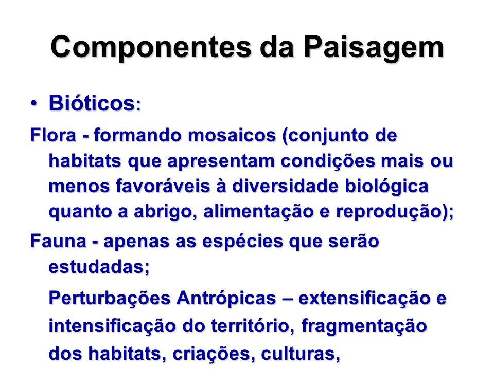 Componentes da Paisagem Bióticos :Bióticos : Flora - formando mosaicos (conjunto de habitats que apresentam condições mais ou menos favoráveis à diver