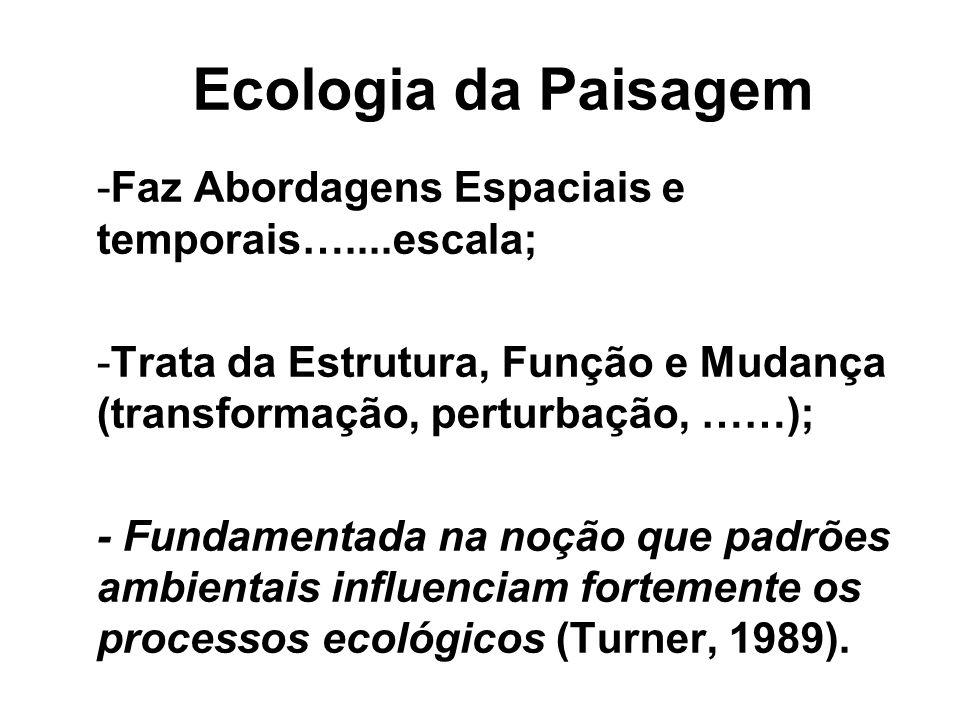 Ecologia da Paisagem -Faz Abordagens Espaciais e temporais…....escala; -Trata da Estrutura, Função e Mudança (transformação, perturbação, ……); - Funda