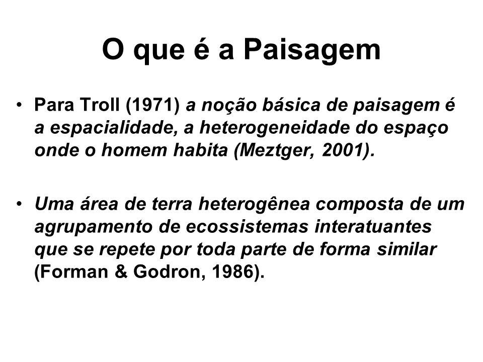 O que é a Paisagem Para Troll (1971) a noção básica de paisagem é a espacialidade, a heterogeneidade do espaço onde o homem habita (Meztger, 2001). Um
