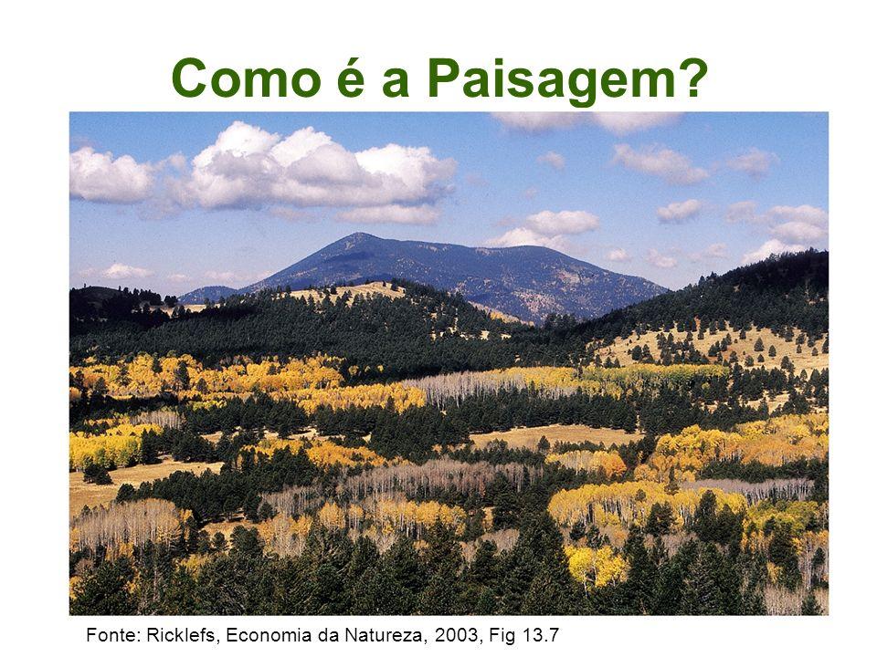 Microbácias Rio Dourados & Rio Brilhante
