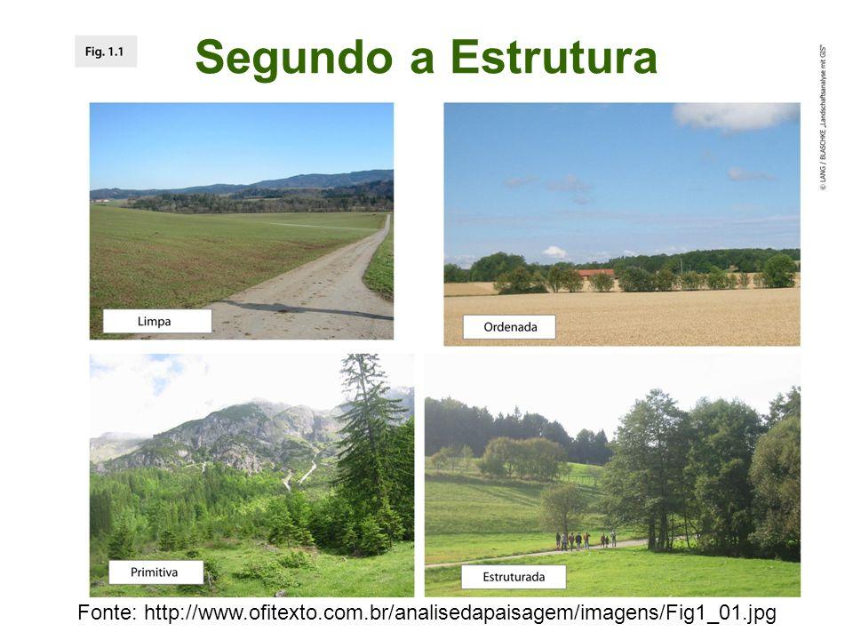 Segundo a Estrutura Fonte: http://www.ofitexto.com.br/analisedapaisagem/imagens/Fig1_01.jpg