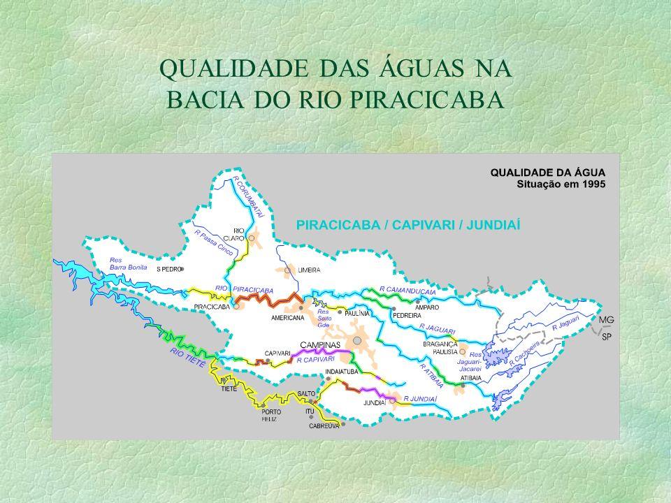 QUALIDADE DAS ÁGUAS NA BACIA DO RIO PIRACICABA