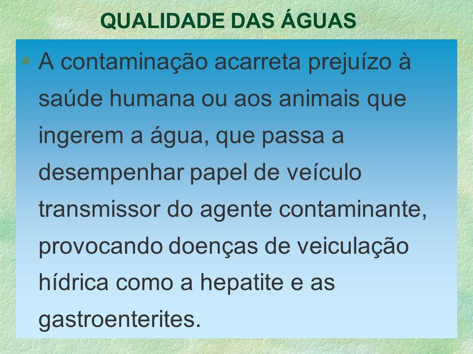 QUALIDADE DAS ÁGUAS §A contaminação acarreta prejuízo à saúde humana ou aos animais que ingerem a água, que passa a desempenhar papel de veículo trans
