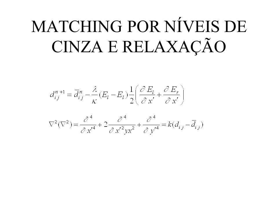 MATCHING POR NÍVEIS DE CINZA E RELAXAÇÃO