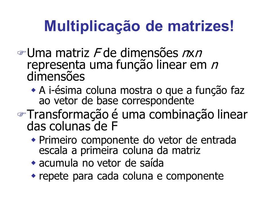 Multiplicação de matrizes! F Uma matriz F de dimensões nxn representa uma função linear em n dimensões wA i-ésima coluna mostra o que a função faz ao