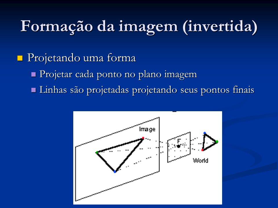 Formação da imagem (invertida) Projetando uma forma Projetando uma forma Projetar cada ponto no plano imagem Projetar cada ponto no plano imagem Linhas são projetadas projetando seus pontos finais Linhas são projetadas projetando seus pontos finais