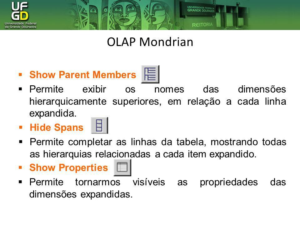OLAP Mondrian Show Parent Members Permite exibir os nomes das dimensões hierarquicamente superiores, em relação a cada linha expandida. Show Propertie